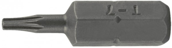 "6,3 mm (1/4"") 6-kant T-Profil mit Loch Schraubendrehbit T30"